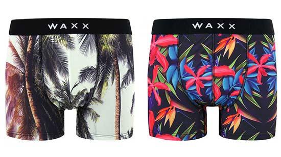 WAXX1