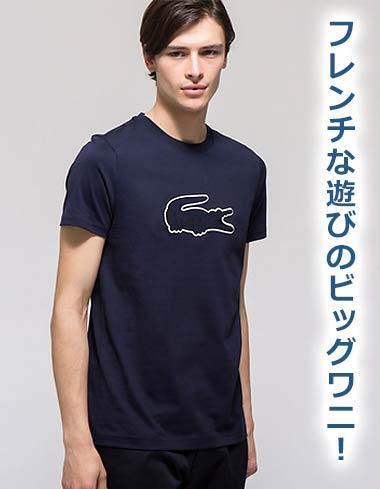 ラコステTシャツ1