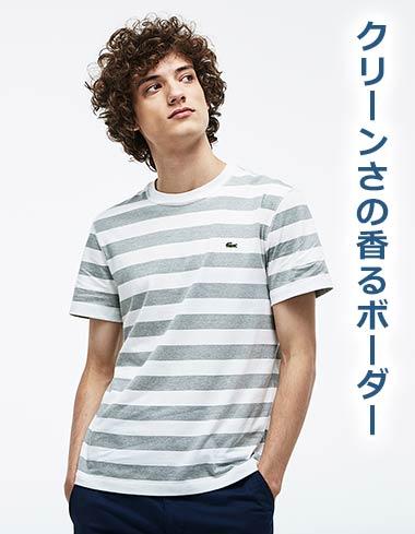 ラコステTシャツ2