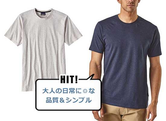 パタゴニア Tシャツ2