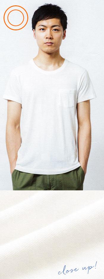 なで型 Tシャツ